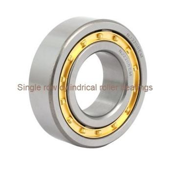 N220M Single row cylindrical roller bearings