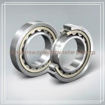 N321EM Single row cylindrical roller bearings